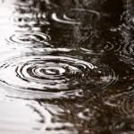 欠陥住宅での雨漏りのトラブル事例