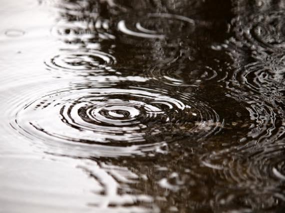 雨漏りによる欠陥住宅のトラブル事例